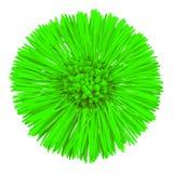 För Tussilagofarfara för blomma som grön moder och styvmor isoleras på vit bakgrund knoppcloseblomma upp element för klockajuldes arkivfoto