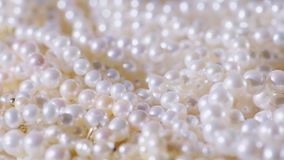 för tygguld för bakgrund svart silver för smycken Halsband av verkliga primaa vitpärlor arkivbild