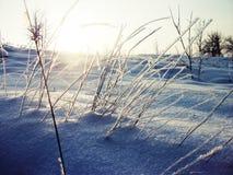 för ukraine för molodabergsun vinter sikt Arkivbild