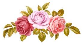 För uppsättningbuketten för vektorn steg den blom- gruppen av rosa färger, röd blå vit tappning blommor gör grön guld- sidor som  vektor illustrationer
