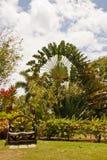 för vagnhjul för bänk trädgårds- tropiskt trä arkivfoton