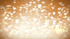 För valentindag för guld- skinande hjärtor ljus bakgrund lager videofilmer