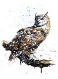 För vattenfärgmålning för uggla rovdjurs- teckning Arkivfoton
