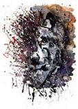 För vattenfärgmålning för varg rovdjurs- teckning Arkivbilder