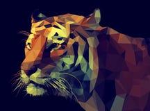 För vektor poly design lågt Tiger Illustration stock illustrationer