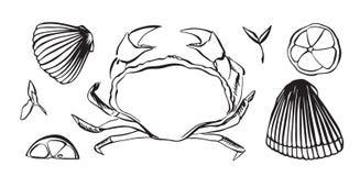 För vektorillustration för hand utdragen krabba som skaldjur Skaldjur med citronen och örter Svart som isoleras på vit bakgrund vektor illustrationer