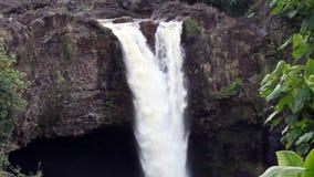 För zoom för vattenfallgräsplan ut tropisk vegetation Hawaii stock video