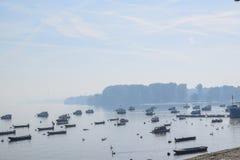 Förankrade fartyg och svanar på floden på den dimmiga soliga morgonen Arkivfoto