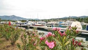 förankrade marinayachter Segelbåthamnen, förtöjde många seglar yachter i havsporten, modern vattentransport, sommartidsemester Royaltyfria Bilder