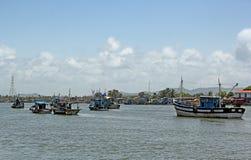 förankrat fiska för fartyg Royaltyfri Fotografi