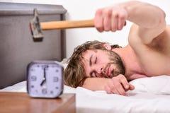 Förarga ljudet Stoppa att ringa Förarga ringa ringklockan Lägger den skäggiga förargade sömniga framsidan för mannen kudden nära  royaltyfri foto