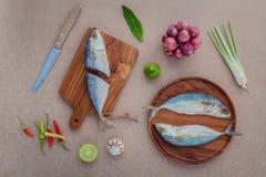 Förbered att laga mat traditionell thai mat bevarad saltad fisksala arkivbild