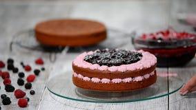 Förbereda danandechokladkakan med bär Handen för kvinna` s dekorerar kakan arkivfilmer