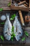 Förbereda den nytt fångade fisken med limefrukt- och mintkaramellsidor royaltyfria bilder