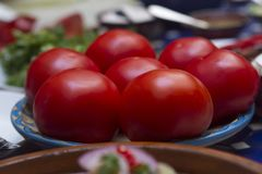 Förbereda ett mål med tomater royaltyfria bilder