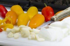 Förbereda för matställe Fotografering för Bildbyråer