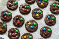 Förbereda hemlagade chokladkakor som dekoreras med den kulöra godisen, tappar Royaltyfri Foto