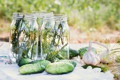 Förbereda ingredienser för att grava gurkor Royaltyfria Foton