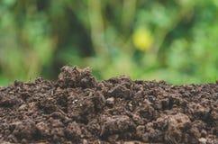 Förbereda jord för jordbruk och hög av jord med grön backg royaltyfri foto