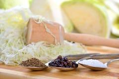 förbereda sauerkrauten royaltyfria foton