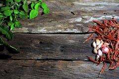 Förbereda sig för örter och kryddor på ett träbräde Arkivbild