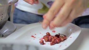 Förbereda sig som är körsbärsrött, medan laga mat ostkaka stock video