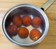Förbereda tomater. Royaltyfri Foto