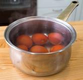 Förbereda tomater. Fotografering för Bildbyråer