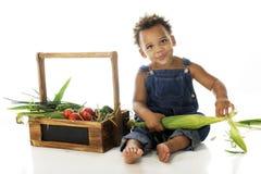 Förbereda veggiesna royaltyfria bilder