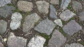 Förberedande bakgrund för gammal kullersten i rörelse stock video