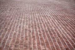 Förberedande stenar för röd tegelsten på en trottoar royaltyfri bild