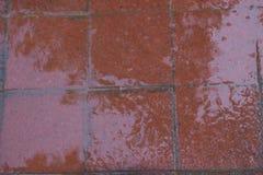 Förberedande stenar för röd våt tegelsten på en trottoar abstrakt frambragd diagramtextur för bakgrund dator Arkivbilder