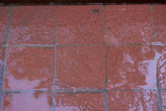 Förberedande stenar för röd våt tegelsten på en trottoar abstrakt frambragd diagramtextur för bakgrund dator Royaltyfri Foto