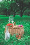 Förberedd födelsedagtabell i sommargräsplanträdgård royaltyfria bilder