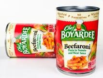 Förberedda cans av pasta- och köttsås arkivbild