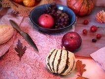 Förberedelse av den pumpa-, frukt- och chokladefterrätten för en festlig säsongsbetonad dinne arkivfoton