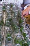 Förberedelse av flaskor för hemlagad tomatsås Royaltyfria Bilder