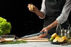 Förberedelse av makrillen av kocken, på en svart bakgrund med citroner, limefrukter arkivbilder