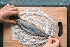 Förberedelse för att steka fisknors i mjöl Arkivbild