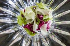 Förberett för blandad sallad av grönsallat och radicchio på abstrakt bakgrund Royaltyfri Foto