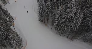 Förbigå skidar skidåkare i bergen i skogen på semesterorten flyg- sikt arkivfilmer