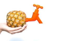 förbind ananaskopplingen Arkivfoto