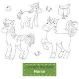 Förbind prickarna (lantgårddjur uppsättning, hästfamiljen) Royaltyfri Bild