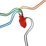 Förbindelsekonstgjord hjärta Fotografering för Bildbyråer