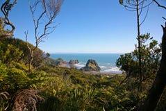 Förbise den lösa västkusten för Auckland ` s Royaltyfria Foton