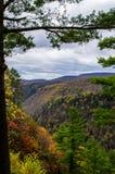 Förbise en dal på hösten Arkivbild