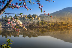 Förbjuda Rak den thailändska byn, en kinesisk bosättning Fotografering för Bildbyråer