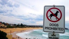 Förbjudet tecken för hundkapplöpning på stranden Royaltyfri Fotografi