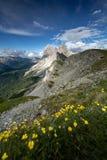 Förbluffa bakgrund, härligt, blått som är ljus, moln, dolomite, dolomiti, gräsplan, ferie, Italien, landskap, berg, natur, outd royaltyfri fotografi