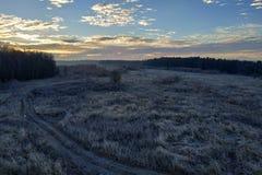Förbluffa det lantliga landskapet av hösten med en fältväg i träna royaltyfria foton